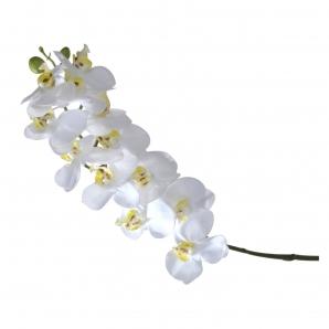 Orchideenzweig weiß 58cm 1Stk