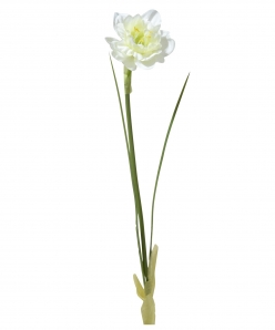 Osterglocke weiß 31cm 6Stk