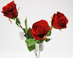 VelvetRose Valentine rot 50cm 3Stk