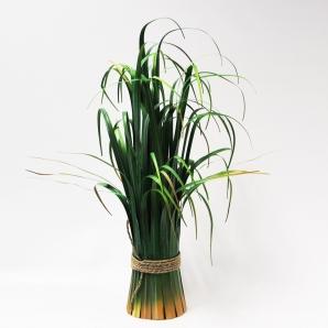 Gras - Schilfgras zum Hinstellen 60cm 1Stk