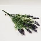 Lavendel Zweig 14x44cm 1Bund