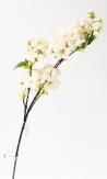 Kirschblütenzweig weiß-rosa 80cm 1Stk