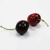 Deko Kirschen rot 2,5cm 24Stk