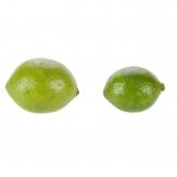 Deko Limetten grün 2,8cm 12Stk