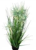 Gras - Distelgras zum Hinstellen 80cm 1Stk
