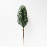 Gigant-Tanne grün 70cm