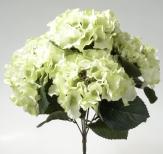 Hortensienbusch creme-hellgrün 38cm 1Stk