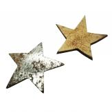Kokosnuss Sterne silber 5cm 50Stk