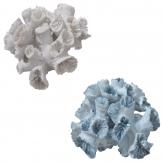 Koralle in zwei Farben 16cm 1Stk
