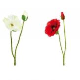 Mohnblume rot und weiß  70cm 1 Stk