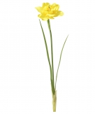 Osterglocke gelb 31cm 6Stk