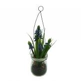 Traubenhyazinthe im Glas blau 21cm 1Stk