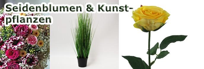 Seidenblumen &  Kunstpflanzen